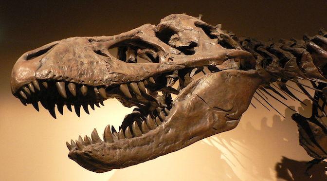 Squelette d'un Tyrannosaurus Rex