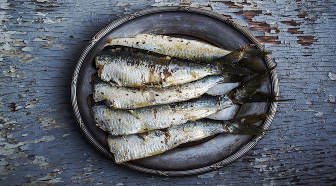 L'activité cérébrale du saumon mort (chronique 50)