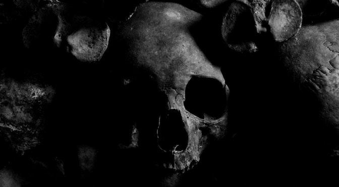 Crâne au milieu d'ossements